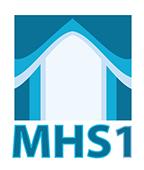 Preguntas y sugerencias sobre MHS1